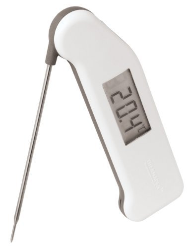Thermometer And Probe White