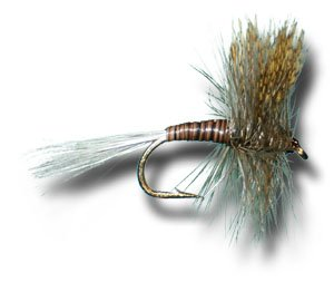 Quill Gordon Fly Fishing Fly - Size 14 - 12 Pack