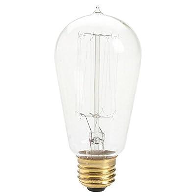 Antique Light Bulb Incandescent [Set of 6]