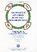 Akupunktur aus China in 101 Fallbeispielen: Diagnose und Therapie gemäß den Grundlagen der Traditionellen Chinesischen Medizin