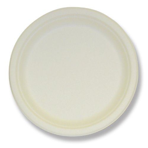 6 Inch Plate - 4