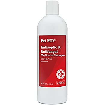 Pet MD - Antiseptic and Antifungal Medicated Shampoo for Dogs, Cats and Horses with Chlorhexidine and Ketoconazole - Soap and Paraben Free - 16 Oz