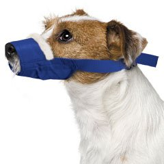 Small, Cozy Quick Muzzle Blue by Four Flags over aspen inc