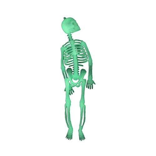 Picter Novelties Halloween Skeleton- Full Body Halloween Skeleton with Movable (Halloween Picters)