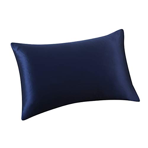 ALASKA BEAR - Natural Silk Pillowcase, Hypoallergenic, 19 Momme, 600 Thread Count 100 Percent Mulberry Silk, Queen Size with Hidden Zipper(1, Navy Blue) ()