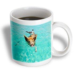 3dRose mug_214477_2