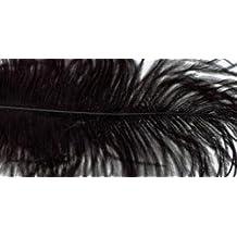 Bulk Buy: Zucker Feather Ostrich Feathers 2/Pkg Black B802-B (6-Pack)