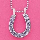 Sparkle Horseshoe Necklace Purple