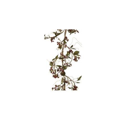 Fantastic Craft Elderberry Garland, 4-1/2-Feet