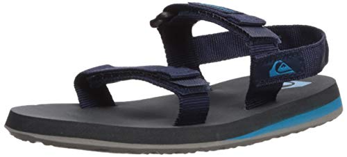 Quiksilver Boys' Monkey Caged Toddler Sandal, Grey/Blue, 9(26) M US