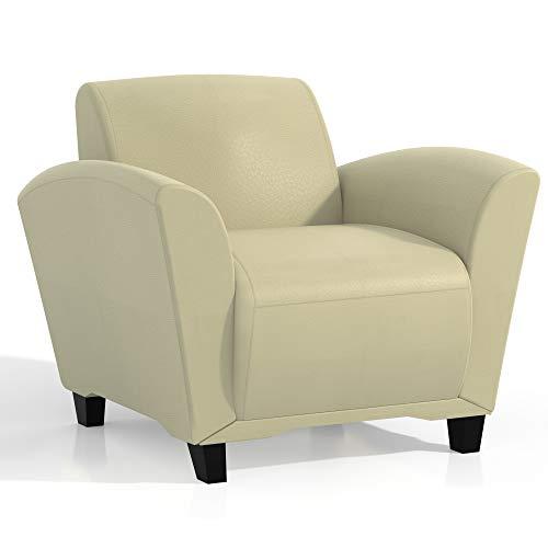 Mayline VCC1BLKA Santa Cruz Leather Lounge Chair, Black Paint, Almond Leather (Furniture Santa Cruz Office)