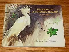 Secrets of a Cypress Swamp