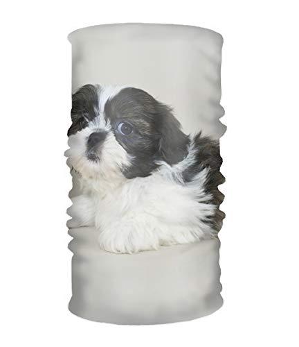 (SHIH TZU DOG Headwear Multipurpose Head Wrap Sport Headband Sweatband)