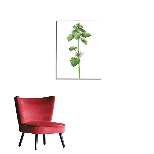 photo wall paper Branch with flowers of wild plant Lamium purpureum (also called dead-nettle purple archangel velikdenche) Watercolor hand drawn painting illustration isolated on a whitemural 16