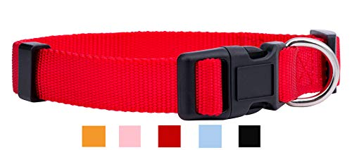 Native Pup Nylon Dog Collar Classic Solid Colors (Medium, Red)