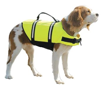 Paws Aboard Large Designer Doggy Life Jacket, Neon Yellow, My Pet Supplies