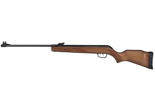 Gamo Hunter Big Cat Air Rifle air rifle (Gamo Bone Collector Hunter Igt Cat Air Rifle)