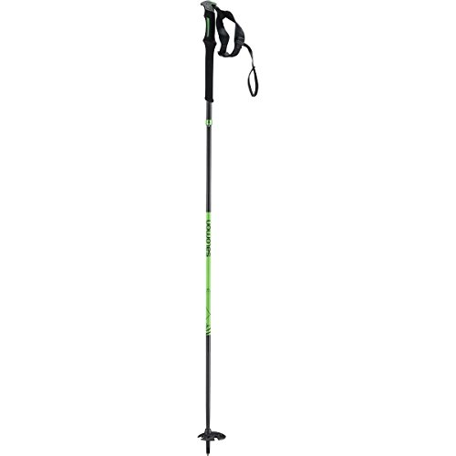 Salomon MTN Outdoor Ski Poles 2016