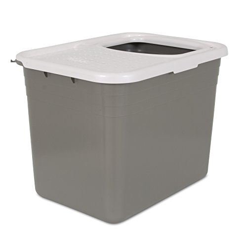 31WfIj jDVL - Petmate Top Entry Litter Pan