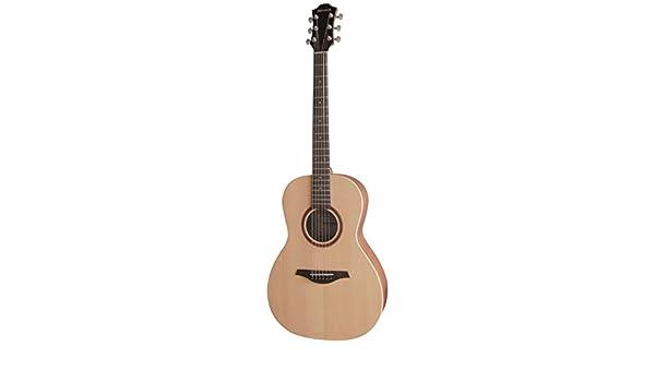 Hohner EP1-SP Parlour - Guitarra acústica con cuerdas metálicas ...
