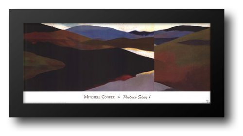 Series Pacheco (Pacheco Series I 34x17 Framed Art Print by Confer, Mitchell)