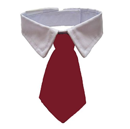- ANIAC Adjustable Dog Cat Neck Tie Puppy Pet Costume White Collar (L, Red)