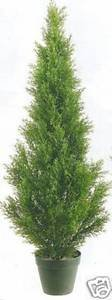 (One 3 Foot Artificial Cedar Topiary Tree Potted)