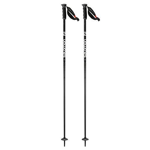 Salomon Arctic S3 Ski Pole, Black/Grey, 120 ()
