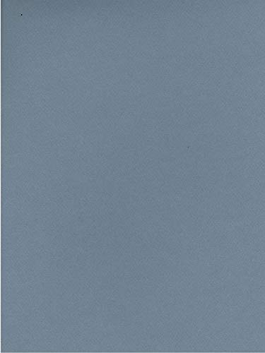 Canson Mi-Teintes Tinted Paper (Light Blue) - 8.5 in. x 11 in. 13 pcs SKU# ()