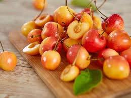 Rainier Cherry Tree - Grow The Worlds Premium Cherry Right at Home!