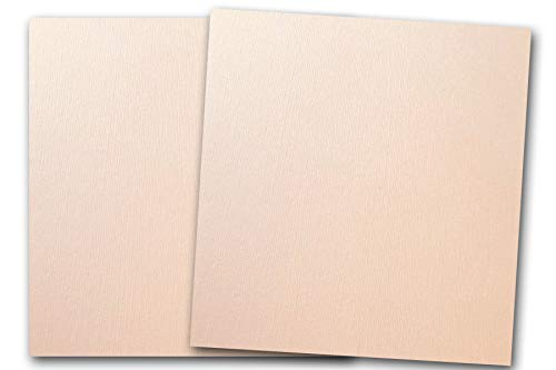 DCS Canvas Textured Ballet Slipper Blush Card Stock - 20 Sheets - Matches Martha Stewart Ballet Slipper - Great for Scrapbooking, Crafts, DIY Projects, Etc. (12 x 12)