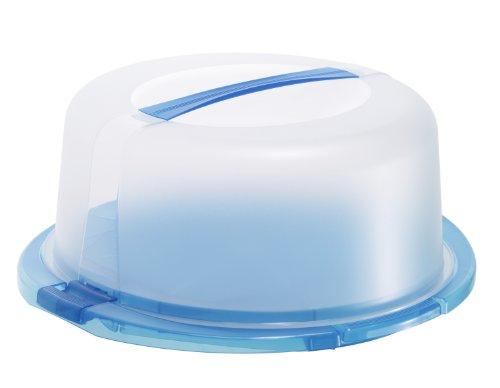 rotho 1720106651 Tortenglocke Kuchenbutler Cool und fresh aus Kunststoff PP, ideal zum Transportieren Kühlen von Torten, mit Tragegriff Kühlkissen, circa 38 x 34 x 16 cm, transparent / blau