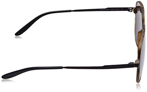 Carrera CARRERA S Brown Havana Negro Mtblack Sonnenbrille Grey 119 fFf7qwgTr