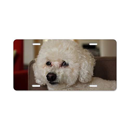 Khope Novelty Vanity License Plate Tag Sign Fred Portrait Dogs Plate Frame Holder