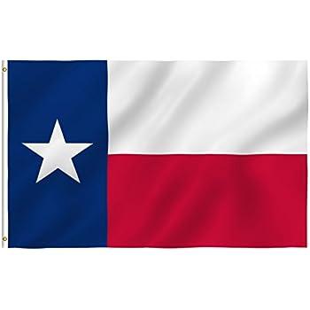 Amazon.com : Texas Longhorns Texas State Flag : Outdoor Flags ...