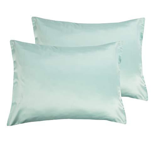 NTBAY Silky Satin Standard Pillowcases Set of 2, Super Soft and Luxury, Hidden Zipper Design, Cyan, ()