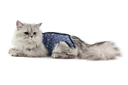 Due Felice Cat Professional Surgical Recovery Suit for Abdominal Wounds Skin Diseases, After Surgery Wear, E-Collar Alternative for Cats Dogs, Home Indoor Pets Clothing Blue Star L from Due Felice