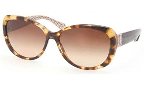 COACH Women's 0HC8040B Spotty Tortoise One - Sunglasses Tortoise Coach