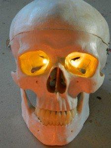 Led Eyes For Mask