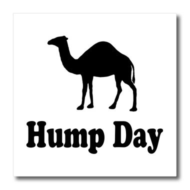 3dRose ht_159637_1 Hump Day Camel Wednesday Iron on Heat Transfer Paper for White Material, 8 by 8-Inch
