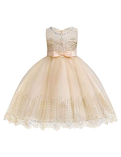 - YaYa Bay Elegant Dresses for Toddlers, Infants Clothes Beauty Neck 3D Floral Embellished Aline Floor Length Pageant Baby Lovely Prom Bow Evening Tutu Gown Size(100) 2-3 Years Champagne