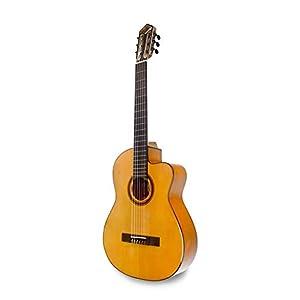 APC Instruments 9F CW Konzert Gitarre