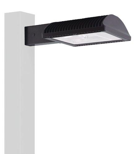 RAB Lighting ALED78 TYPE IV 8 POLE ARM COOL LED + 120V PC BRONZE