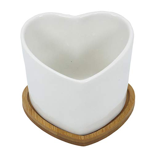 Gemseek Heart Shaped Succulent Planter Pot, White Ceramic Cactus Flower Container Bonsai Holder with Bamboo Drainage Tray for Indoor Home ()