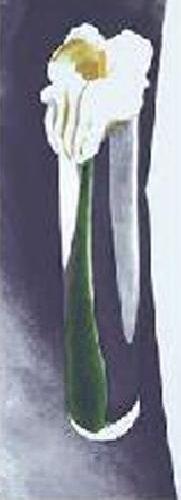 Georgia Okeeffe Calla Lily - Georgia O'Keeffe - Calla Lily in tall glab 1923 Serigraph