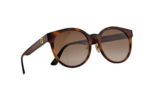 Gucci GG0416SK Sunglasses Havana w/Brown Gradient Lens 55mm 005 GG0416/SK 0416/SK GG 0416SK (Gucci Brille Frames Für Frauen)