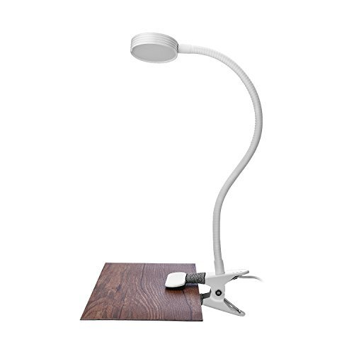 Clip on Reading Light for Bed, Studying, Working, Bedroom, Office,3W Led Eyes-Care Desk Lamp,2-Mode Light Color (daylight and warm light) Switchable with Flexible Arm, for Headboard, Desk, Bedstead