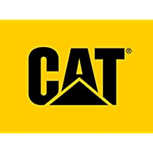 Caterpillar C13 DPF delete 3651153 fls - Caterpillar Flash File