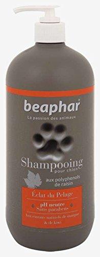 Beaphar - Champú Premium para perros pelaje brillante, 750 ml