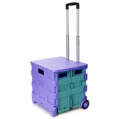 Lakeland Foldable Funky Trundle Storage on Wheels - Perfect For Festivals!